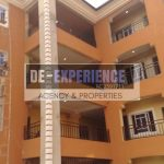 029. STANDARD ONE-BEDROOM FLAT TO LET at Ifite 11