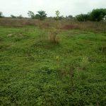 049. 2 standard plots of Land available at Agu-Awka 8