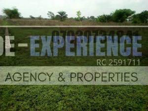 Properties For Sale 6